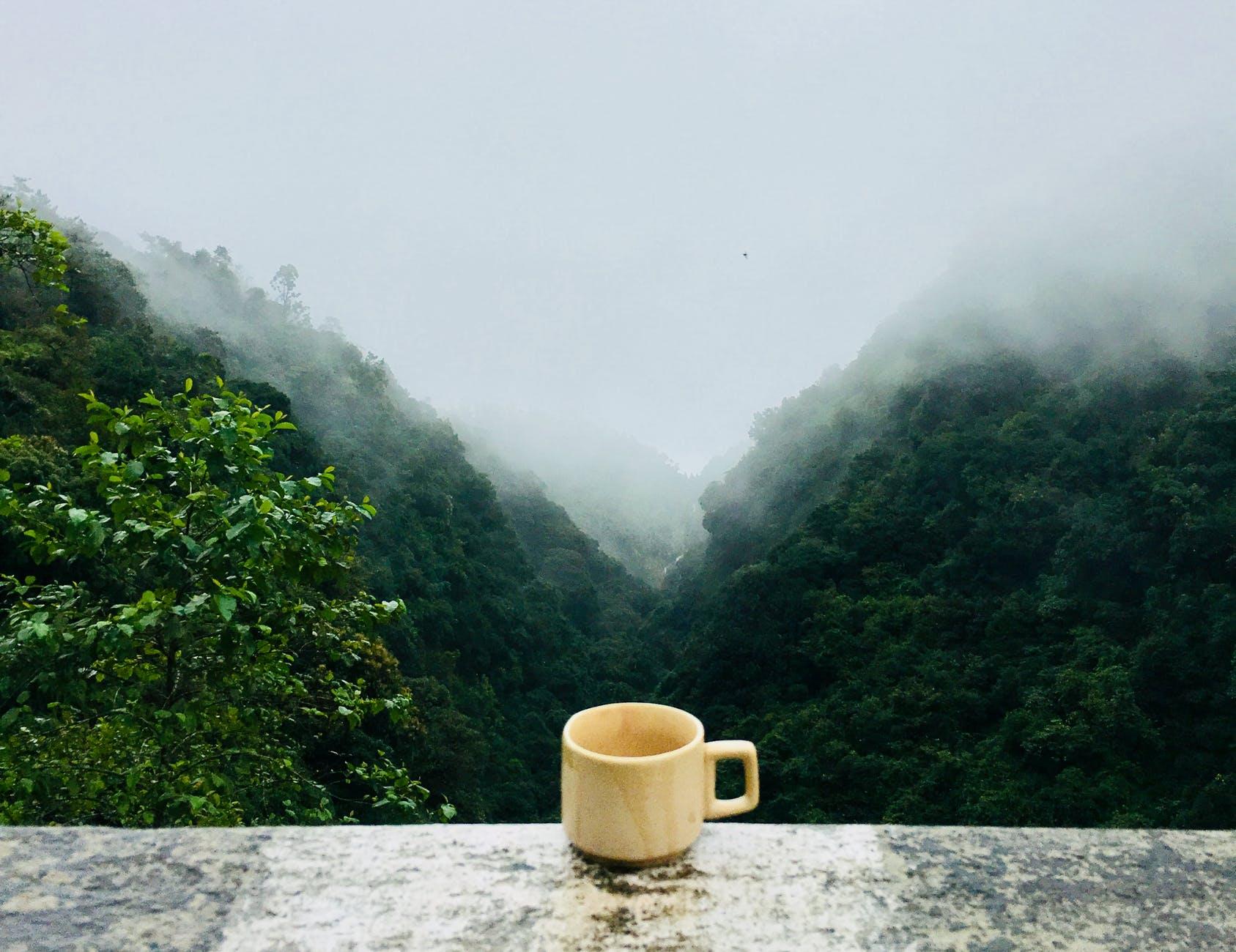 white ceramic cup